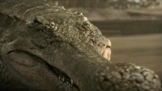File:Sarcosuchus-2.png
