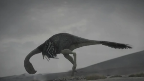 File:Gigantoraptor-1.6-8.png