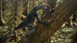 1x2 EpidexipteryxDiggingIntoTree