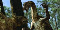 Nothronychus