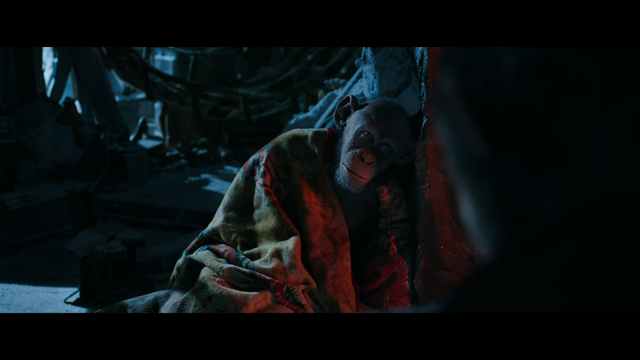 File:WPOTA Bad Ape wrapped in a blanket.png