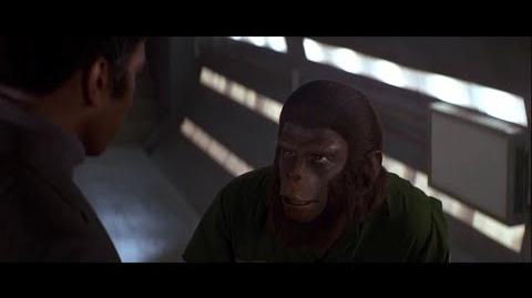 Conquest of the Planet of the Apes (1972) How the apes will gain freedom part 1