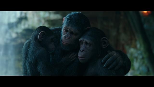 File:WPOTA Caesar hugging Milo & Cornelia.png
