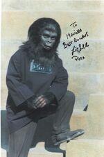 Gorilla Child