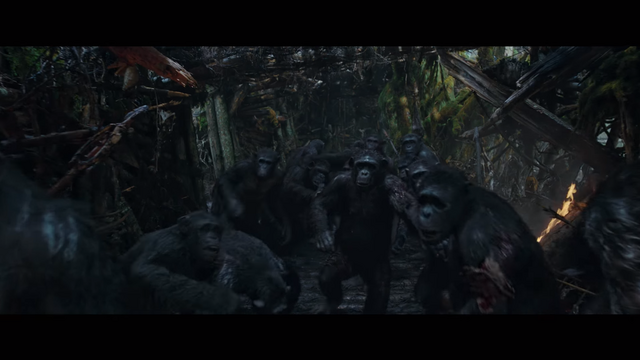 File:WPOTA Wounded Chimps 2.png