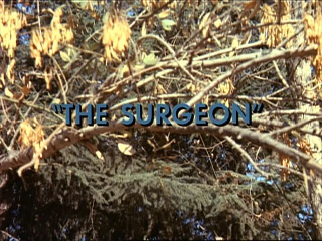 File:The Surgeon.JPG