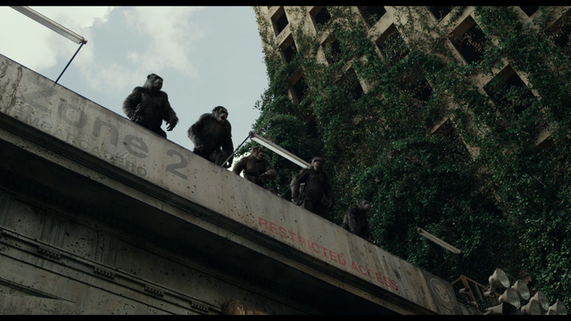 File:Koba and the apes.png