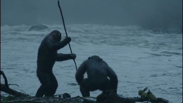 File:Blue eye and ash fishing featurette pic.jpg
