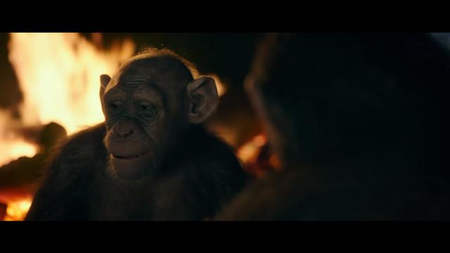 File:WPOTA Bad Ape 8.png