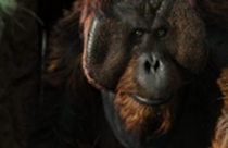 File:Maurice. Rocket's close friend.png