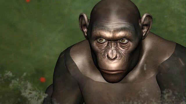File:CG Chimp 2.jpg