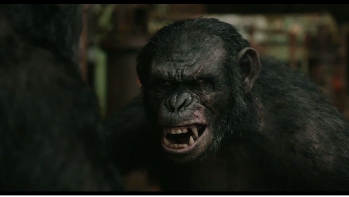 Grey | Planet of the Apes Wiki | Fandom powered by Wikia