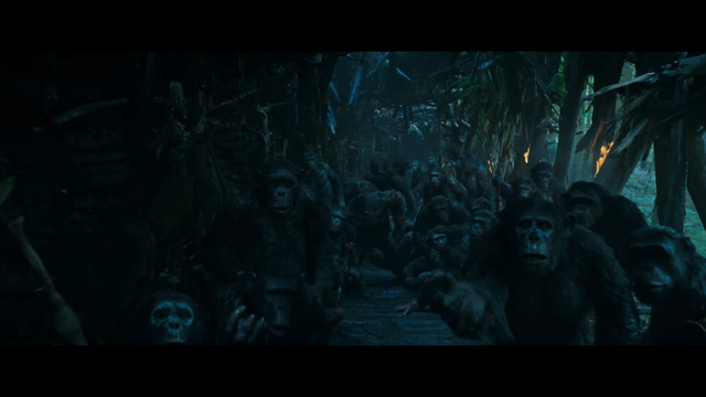 File:WPOTA Wounded Chimps.png