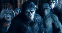 Dawn-Of-The-Planet-Of-The-Apes-10