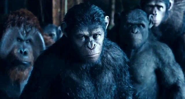 File:Dawn-Of-The-Planet-Of-The-Apes-10.jpg