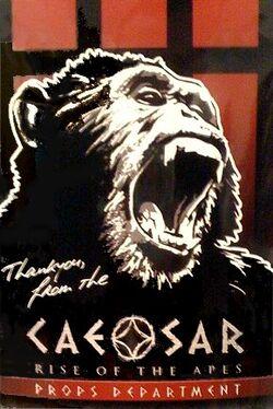Caesarlogo