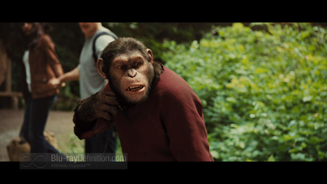 File:Rise of the Planet of the Apes09.jpg