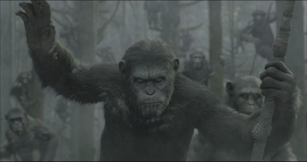 File:Dawn of the apes 625.jpg