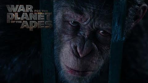 War for the Planet of the Apes Compassion 20th Century FOX