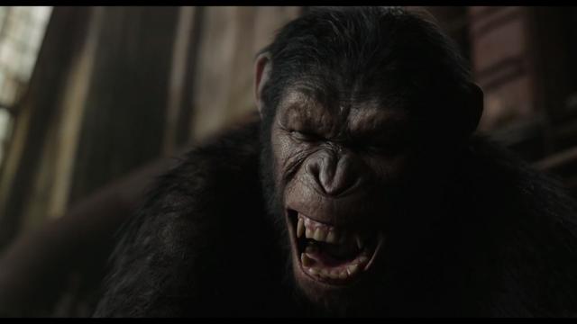 File:Caesar snarls as he strangles Koba.png