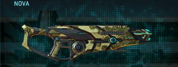 Palm shotgun nova