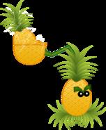 Pineapple Pult