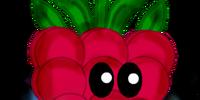 Berrymist