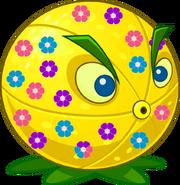 Citronflower Image