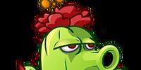 Cactus (PvZ: AS)