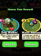 Choice between Dog Walker and Water Balloons