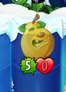 Grizzly Pear defeated