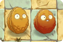 File:Explode-O-Nut with Wall-nut.png