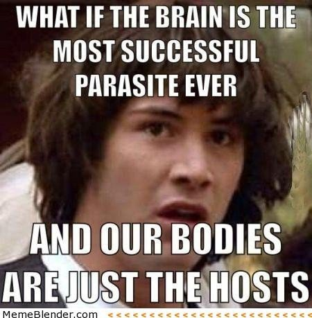 File:20226-Conspiracy keanu the brain.jpg