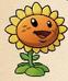 Sunflowderp