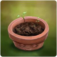File:Flower Pot.jpg