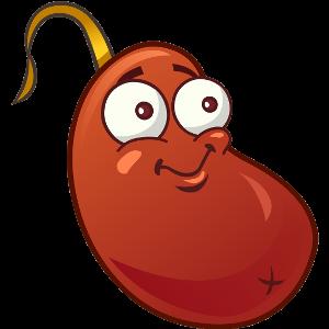 File:Chili bean1.png