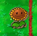 File:Cardboard Sunflower.jpg