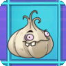 File:Garlic2.png