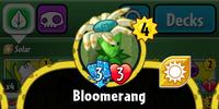 Bloomerang (PvZH)