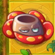 Rafflesia On A GT