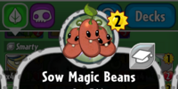 Sow Magic Beans