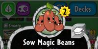 Sow Magic Beans