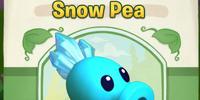 Snow Pea (PvZA)