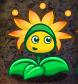 File:Star flower.png
