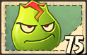 File:Lava Guava's seed packet.png