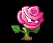 File:Roseswordman.png