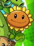 SunflowerPack2
