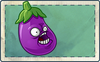 File:Eggplant Seed Packet Full.png