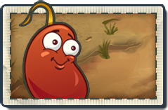 File:Chili Bean New Wild West Seed Packet.png