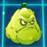 Squash2.png